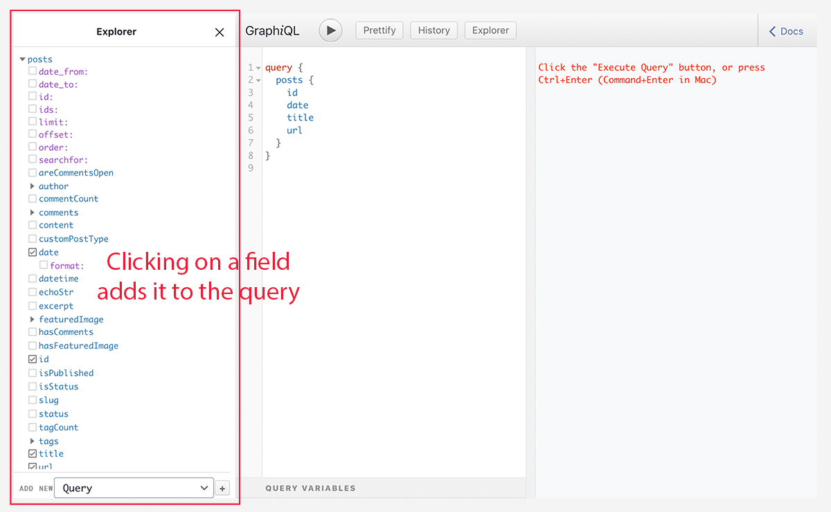 Adding fields to the query with the Explorer